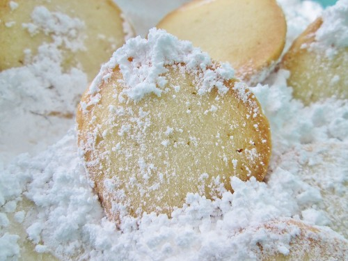Key Lime Coins - Alison's Wonderland Recipes