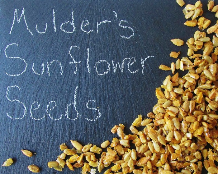 xfiles-mulders-sunflower-seeds-ap-3527