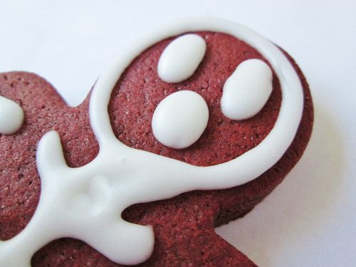 edgar-allan-poe-red-death-red-velvet-skeleton-cookies-d-0558